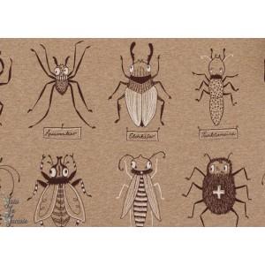 Jersey Bio Insectes sur fond Sable