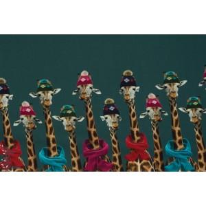 Double Bordure Jersey Girafe Stenzo