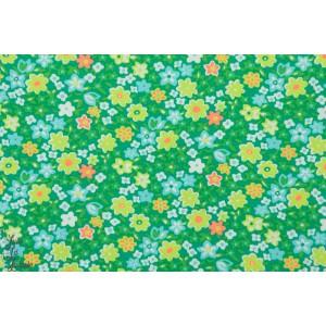 Popeline Petit Pan Fleur Oranger Vert Menthe