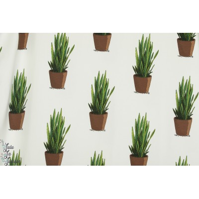 Sweat french Terry SANSEVIERA see you at six playtime soft cactus plante verte