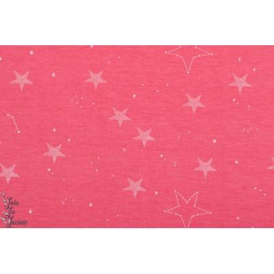 Jersey Lucky Star en rose par Sarah Jane Michael Miller