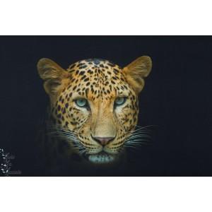 Panneau jersey digital léopard Stenzo