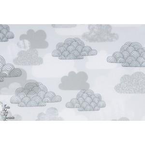 Tissu Laminé Mate Passing cloud - Cloud9 - Nuages