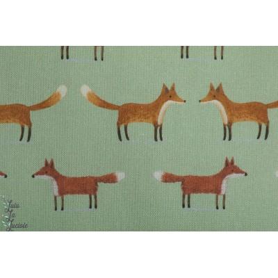 Canvas renard vert clair coton épais toile