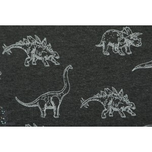Sweat dinos dream gris foncé