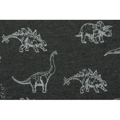 Sweat dinos dream gris foncé graphique dinosaure garçon enfant animaux mec