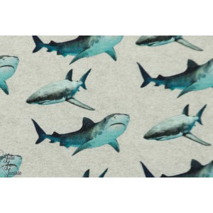 Jersey digitak Shark gris chiné requin mer garçon