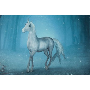 panneau Jersey Licorne STENZO cheval nuit