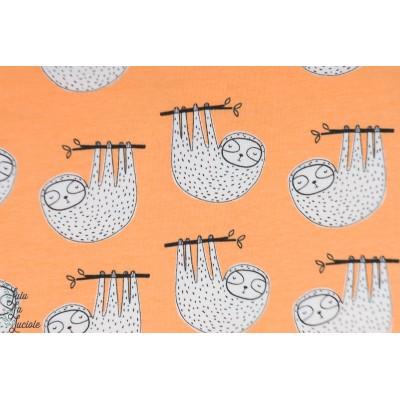 Jersey bio Sunset Sloth Amne paresseux graphique orange animaux petit enfant