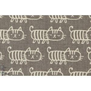Chats sur fond gris
