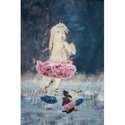 Panneau jersey tous en tutu  Stenzo cheval lapin danse ballet drole