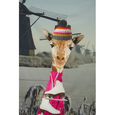Panneau jersey Stenzo Giraffe en Hollande moulin dole vacances bonnet