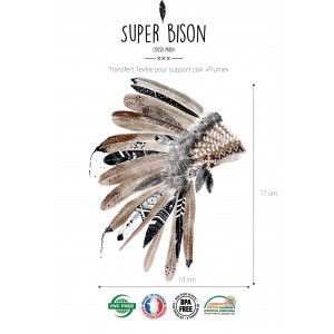 Transfert SUPER BISON Plumes