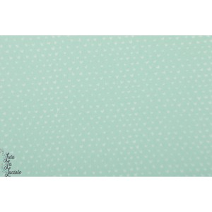 Popeline Dear Stella Hearts Mint coeur vert little red graphique wg301
