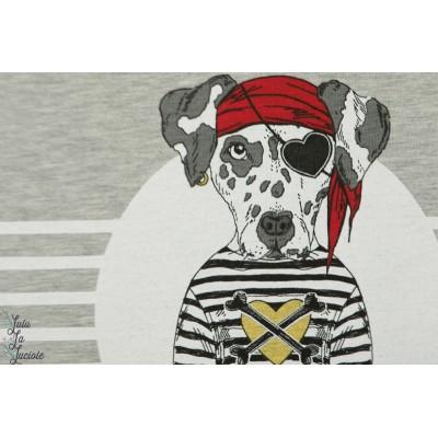panneau sweat chien pirate rouge Stenzo enfant