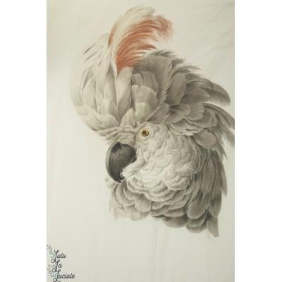 Panneau Jersey Digital Stenzo Aras oiseau péroquet robe fmme