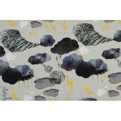 Sweat bio Flash and Rumble grey orage éclair nuage ciel émotion enfant flash colère graphique story of roo