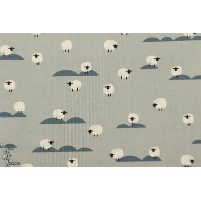 Popeline SHEEP NEWSPAPER Cotton steel mouton graphique gris