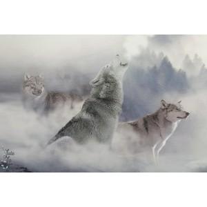 Panneau jersey Stenzo Loup et cheval