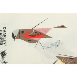 Jersey Bio Charly Harper Western Birds oiseau birch fabric interlock