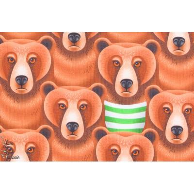 "tissu coton Jersey Bio ""Grumpy Grizzly"", Ours, collection Be wild de Hambuger Liebe pour Hilco, ours grincheux."