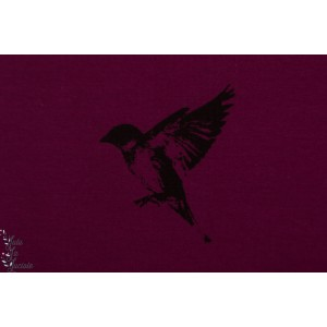 Sweat bio brossé Sparrow Bordeaux Chat Chocolat