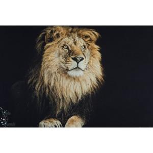 Grand Panneau jersey Lion Lionne Stenzo animaux femme robe stenzo