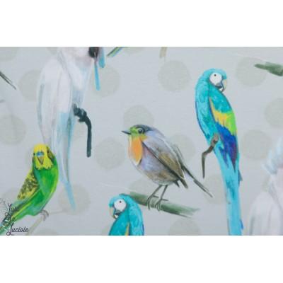 jersey Bio Cantare Lillestoff oiseau ile bleu vert