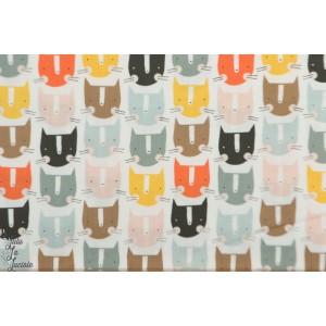 Popeline Cats Multi EMI1403 Dashwood Studio