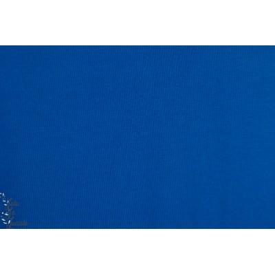 Bord Cote Bio Chat Chocolat bleu