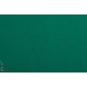 Bord Cote Bio Chat Chocolat vert