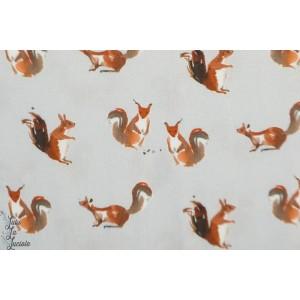Viscose Ecureuil  graphique animaux