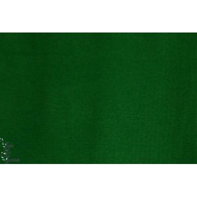 Bord cote Tube Vert