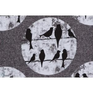 Sweatshirt Léger Birds Gris