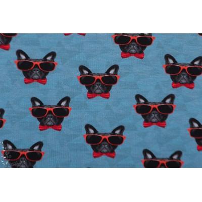 Jersey Dogue Star Rouge chien lunette rigolo jean homme enfant bleu