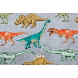 Jersey digital Dinosaures dino enfant poppy garçon