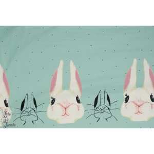 jersey Lapin Stenzo menthe double bordure