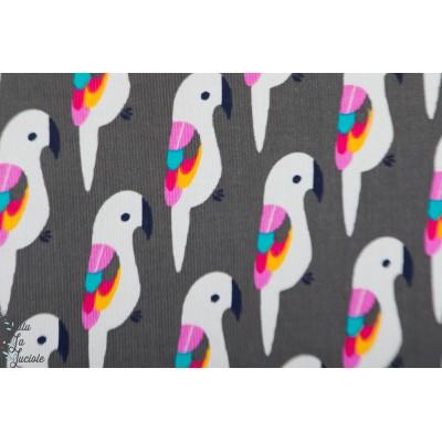 Velours milleraie graphique péroquets vintage couleur graphqiue oiseau