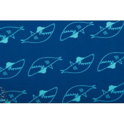 Jersey katia Little sharks petit requin mer bleu katia graphique enfant