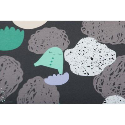 jersey Bio Roo Seascape dark ciel mer nuage noir rêve imaginaire storry