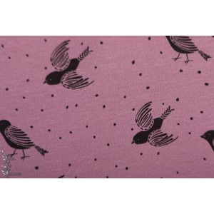 Summersweat bio Birds and Dots rose Lillestoff