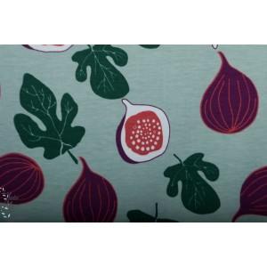Jersey bio Figue Elvelyckan Design fruit retro design graphique