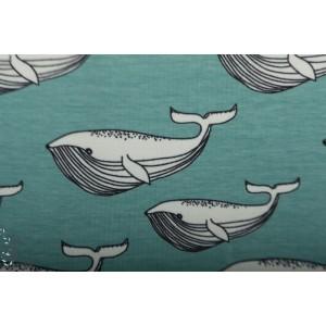Jersey Bio Whale Aqua Elvelyckan Design baleine mer gaphique