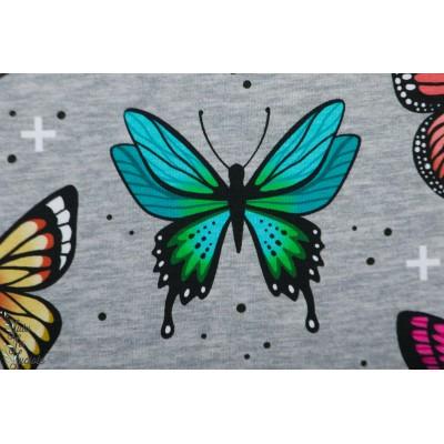 Sweat bio ALB Wanderlust Butterfly hamburger liebe papillon gris
