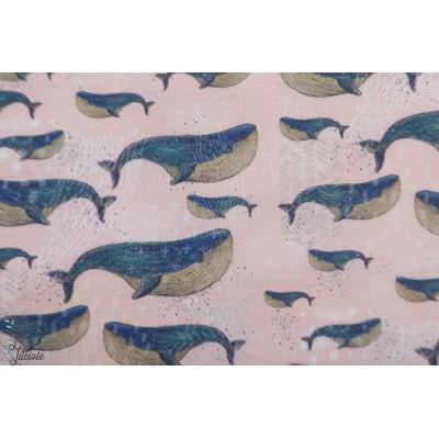 Modal Walfisch Lillestoff baleine mer graphique jersey rose