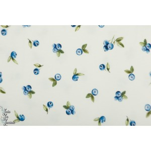 Jersey Blueberries Family fabric baie retro vintage myrtille