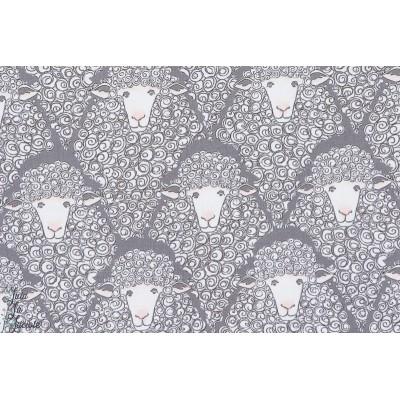 Tissu coton  Popeline Eyes on Ewe michael miller mouton géométrique