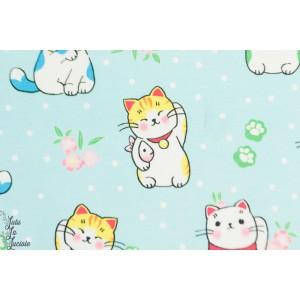 Jersey Hilco Naruto chat japon enfant