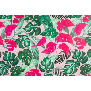 Jersey VIDAKKO Soft Pink verson Pioti