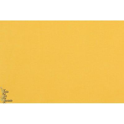 Bord Cote Bio chat Chocolat jaune